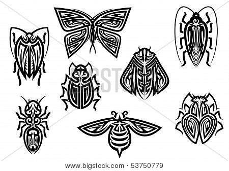 Insect tattoos in tribal style isolated on white background poster