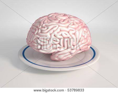 Brain On A Saucer