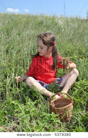On A Meadow