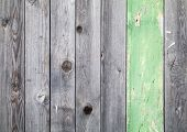 Background texture of old gray weathered wooden lining boards with one green painted plank poster