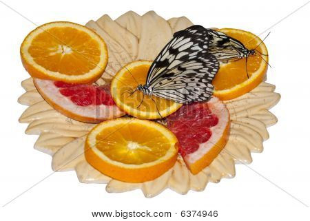 Two Butterflies On Oranges.