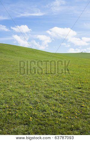 Simple Background Horizontal