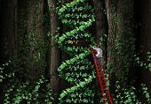 Gene therapy DNA helix concept with a medical genetics specialist doctor on a ladder climbing a plant that represents part of the human chromosomes anatomy as a biotechnology metaphor for genetic testing and repair. poster