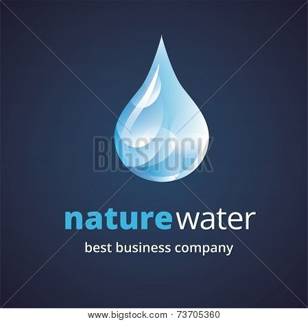 Abstract water logo icon concept isolated on white background for business design. Key ideas is busi