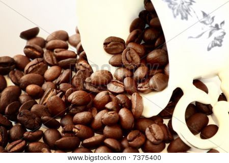 Coffee beans from a cup