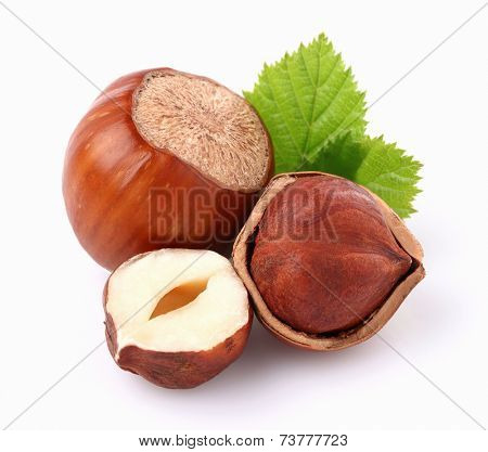 Hazelnuts with leaf