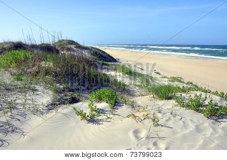 Sand Dune in Cape Hatteras, North Carolina
