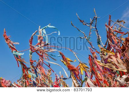 Colorful ribbons and scraps on wishes tree in Cesme Turkey poster