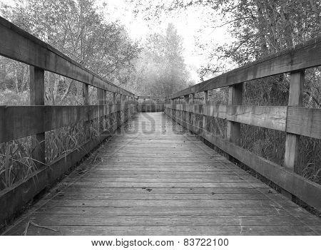 Wooden bridge walkway