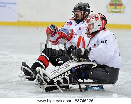 Two Sledge Hockey Players