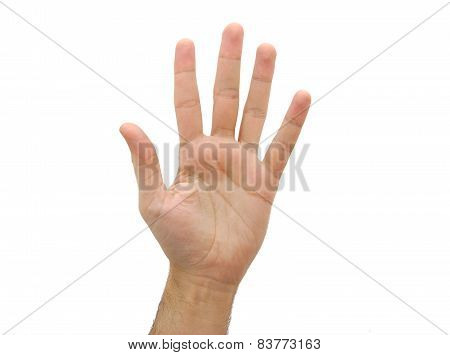 Caucasian open man hand. Number five gesture isolated on white background poster