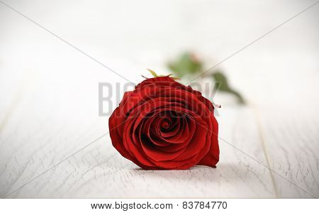 Single red rose on a wooden background. Valentine Day background