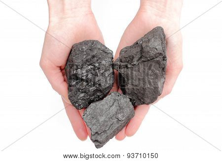 Woman Hand Holding Coal Lumps On White Background