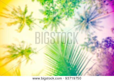 Hippie Rasta Style Blurred Nature Background.