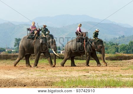Asia Travel, Summer Vacation, Eco Tour, Elephant
