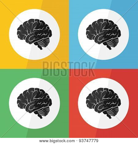 Brain Icon ( Flat Design ) On Different Color Background ( Lateral View ) Use For Brain Disease