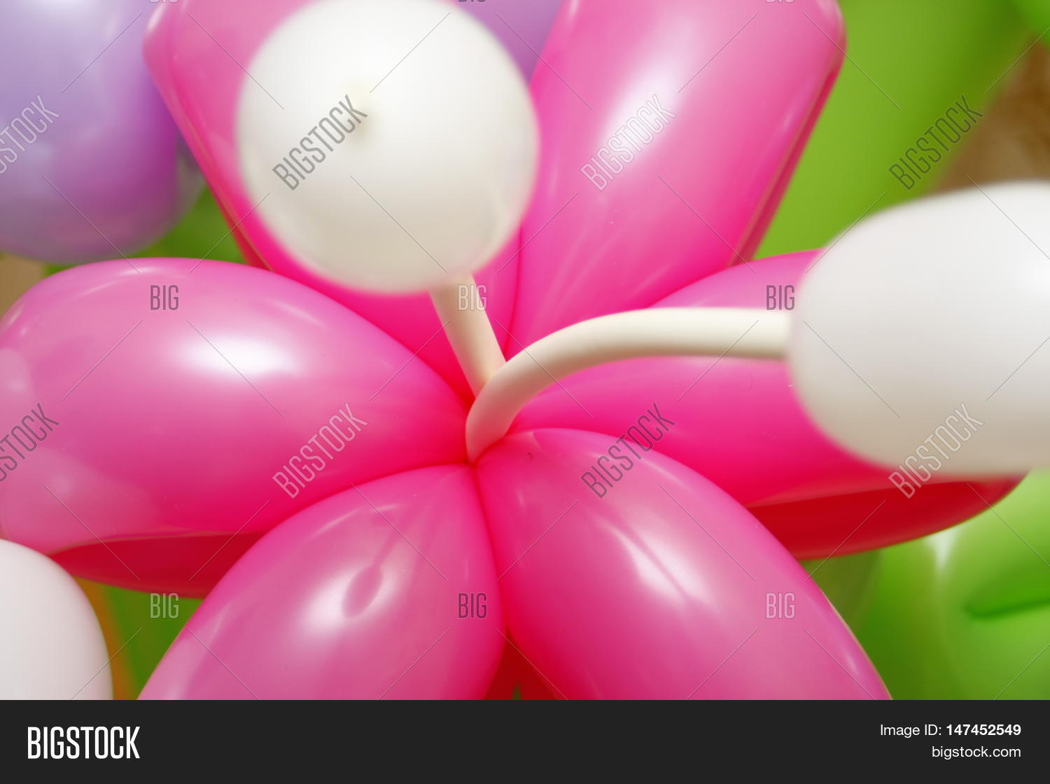 Balloon Flowers Latex Image Photo Free Trial Bigstock