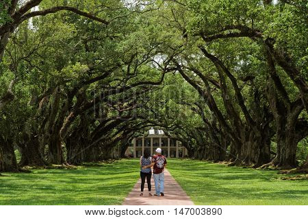 Vacherie, Louisiana, May 4, 2015 : Tourists At Oak Alley Plantation, Looking Towards The Main House.