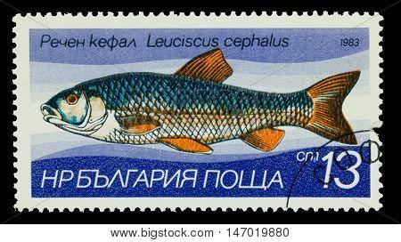 Bulgaria - Circa 1983