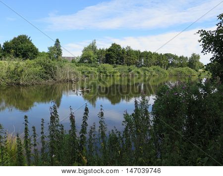 Shrubbery reflected in Idyllic lake in sunshine in Southern Denmark