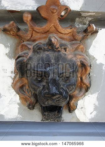 Bas-relief of a lion head from the tree on the wall.
