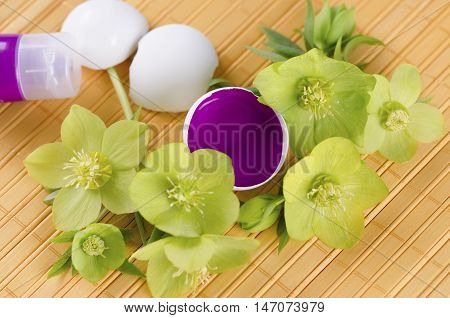 Easter decoration with hellebore and egg shells and magenta tempera paint