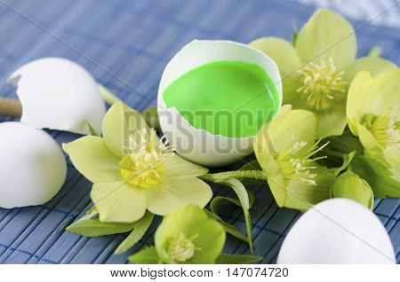 Colorful Easter decoration with egg shell filled with green tempera paint and hellebore