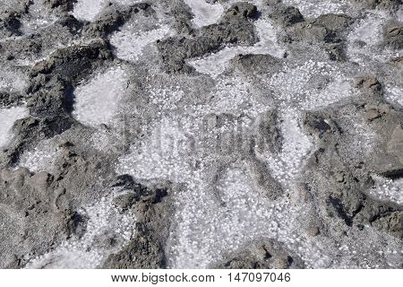 The Crust Of Salt On The Bottom  The Curative Mud Dry Lake