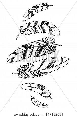 Black decorative feathers isolated on white background.