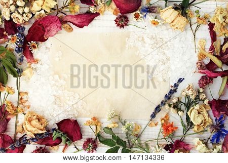 Herbal framed recipe background, empty paper center. Various dried medicinal plants, natural health and beauty care.