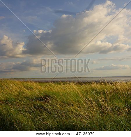 View of Spurn Head / Point in distance with grass in foreground and clouds above