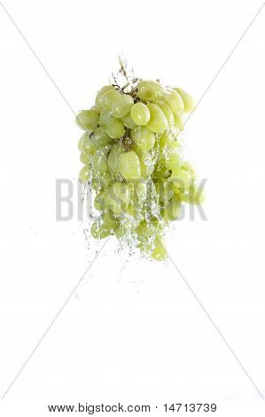 bunch of grapes against splashing water on white background