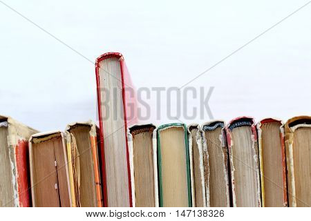 red book stands out from the crowd of old shabby editions / different from other