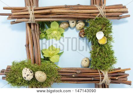 Easter frame with seven quail eggs and two hellebore flowers. Copy space