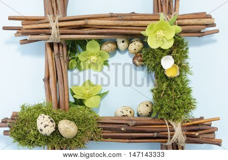 Easter frame with eight quail eggs two hellebore flowers down and one up