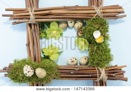 Easter frame with eight quail eggs and three hellebore flowers