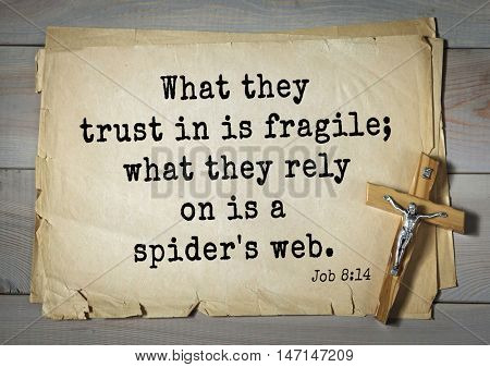 TOP- 100. Bible Verses about Hope.What they trust in is fragile; what they rely on is a spider's web.