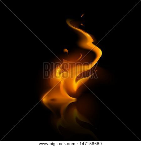 Vector Yellow Orange Fire Flame Bonfire  Isolated on Background