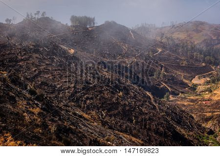 Mountains of Madeira after devastating fire in summer 2016. Lot of forests being UNESCO heritage were destroyed in that disaster probably started by pyromaniac.