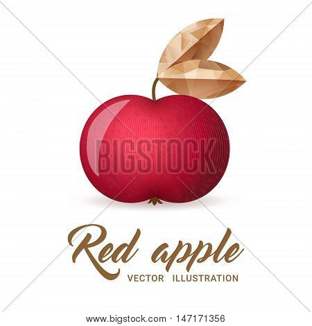 Realistic red apple isolated on white - vector illustration. Big red apple with bright golden leaf.