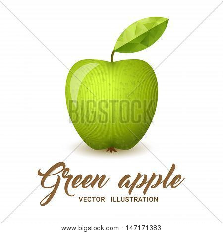 Realistic green apple isolated on white - vector illustration. Big green apple with bright green leaf.