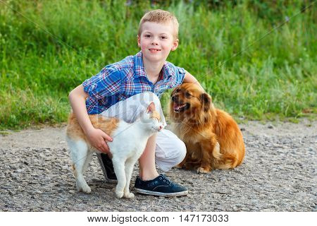 Smiling Little Boy With A Cat And A Dog Sitting On The Road, The Guy Stroking A Dog, A Cat Rubs Agai