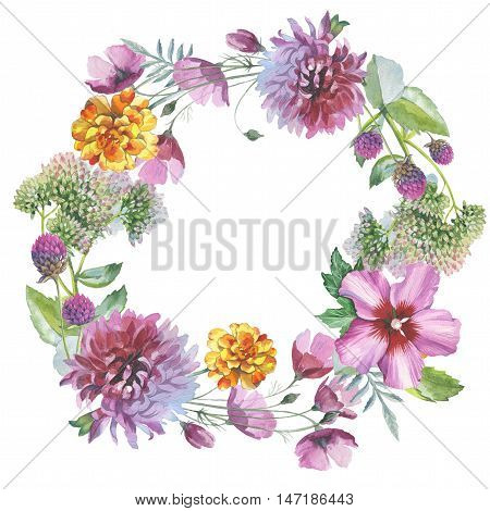 Wildflower chrysanthemum flower wreath in a watercolor style isolated. Full name of the herb: chrysanthemum, dahlia. Aquarelle flower could be used for background, texture, pattern, frame or border.