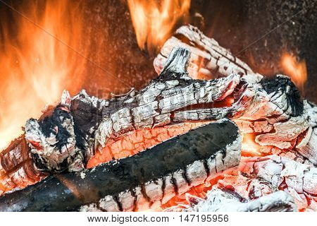 wood fire outdoor cooking on embers preparation