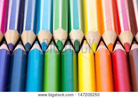 Crayons. Colored Pencils. Colored pencils background. Colorful background