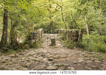 An image of an ancient stone bridge in Dartmoor National Park, Devon, England, UK