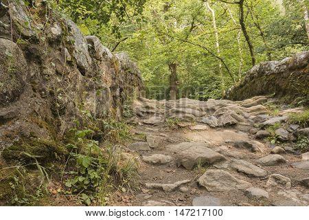 An image of a Packhorse Bridge in Dartmoor National Park, Devon, England, UK