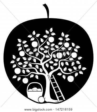 vector apple tree, ladder and basket of apples in apple isolated on white background
