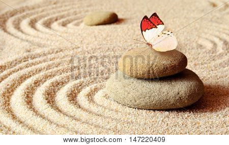 Butterfly on a zen stone with circle patterns in the yellow grain sand. Butterfly, stone and sand.
