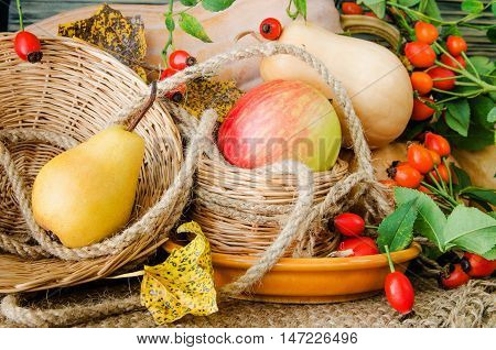 Autumn still-life with large group of products like apple, pear, pumpkin and more